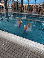 Турнир по синхронному плаванию